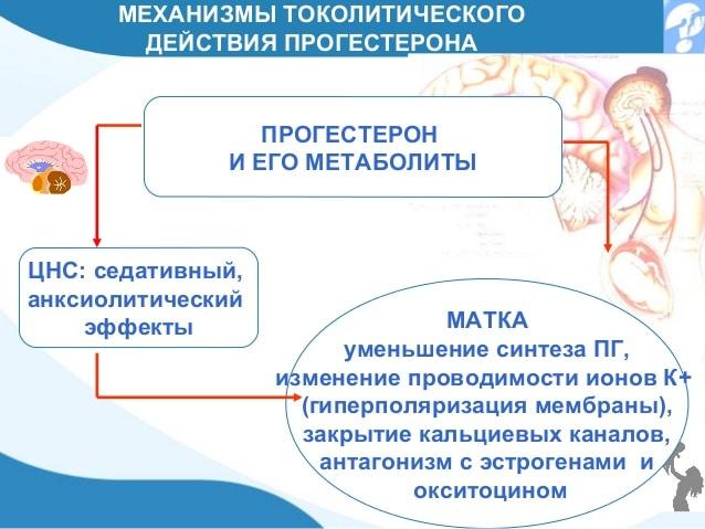 прогестерон механизм действия