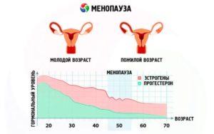эстрогены в период менопаузы