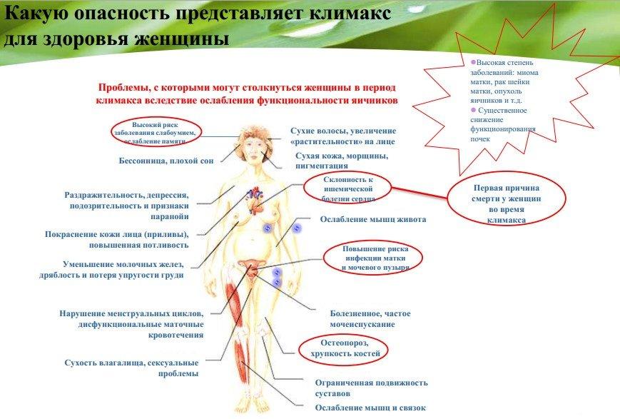 климакс клиника