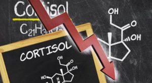 анализ на гормон кортизол