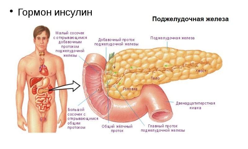 гормональный дисбаланс у мужчин