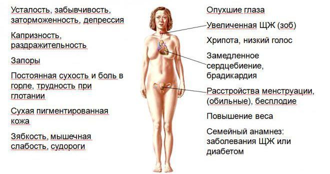 высокий пролактин у женщин