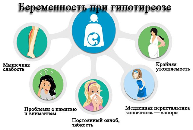 влияние щитовидной железы на беременность