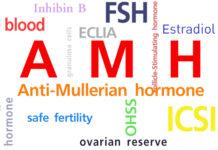 антимюллеровый гормон