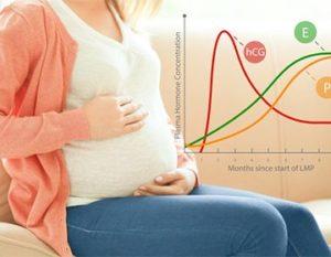 влияние прогестерона на беременность