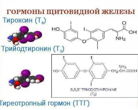 недостаток тироксина