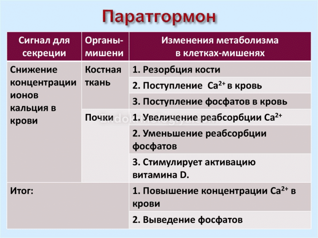 диагностика гиперпаратиреоза