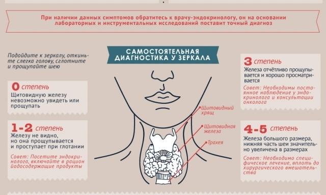 диагностика зоба щитовидной железы