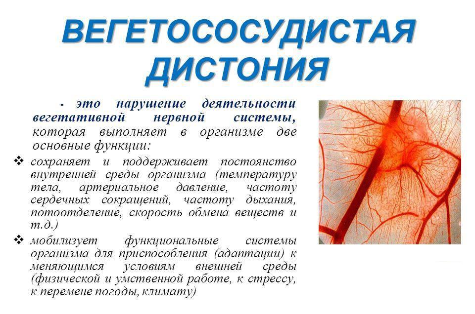 вегетососудистая дистония при климаксе