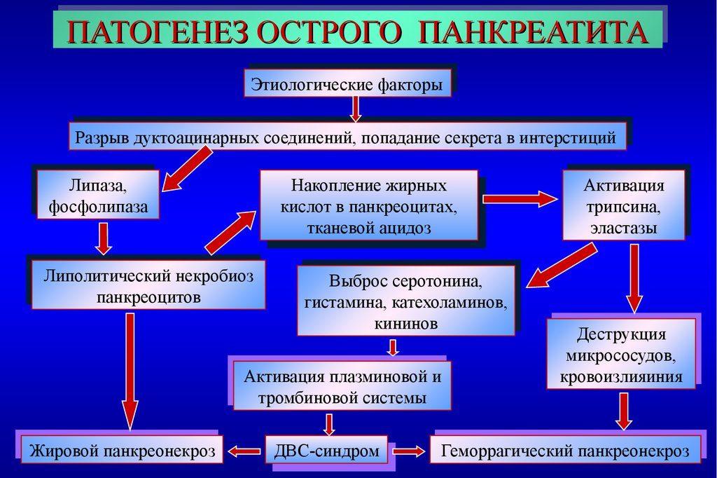 патогенез острого панкреатита