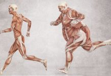 развитие инсулинорезистентности
