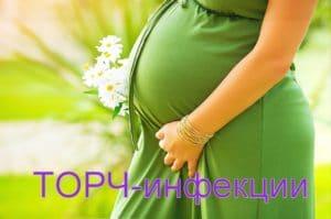 анализ torch инфекции беременной