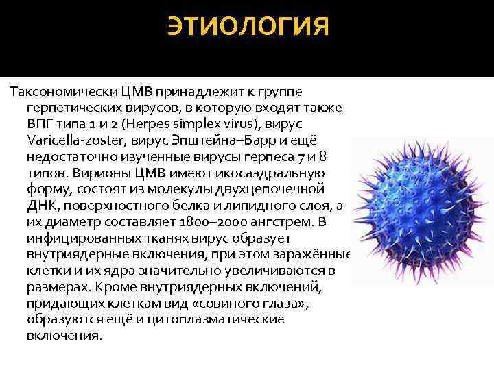 цитомегаловирусная инфекция и ее причины у женщин
