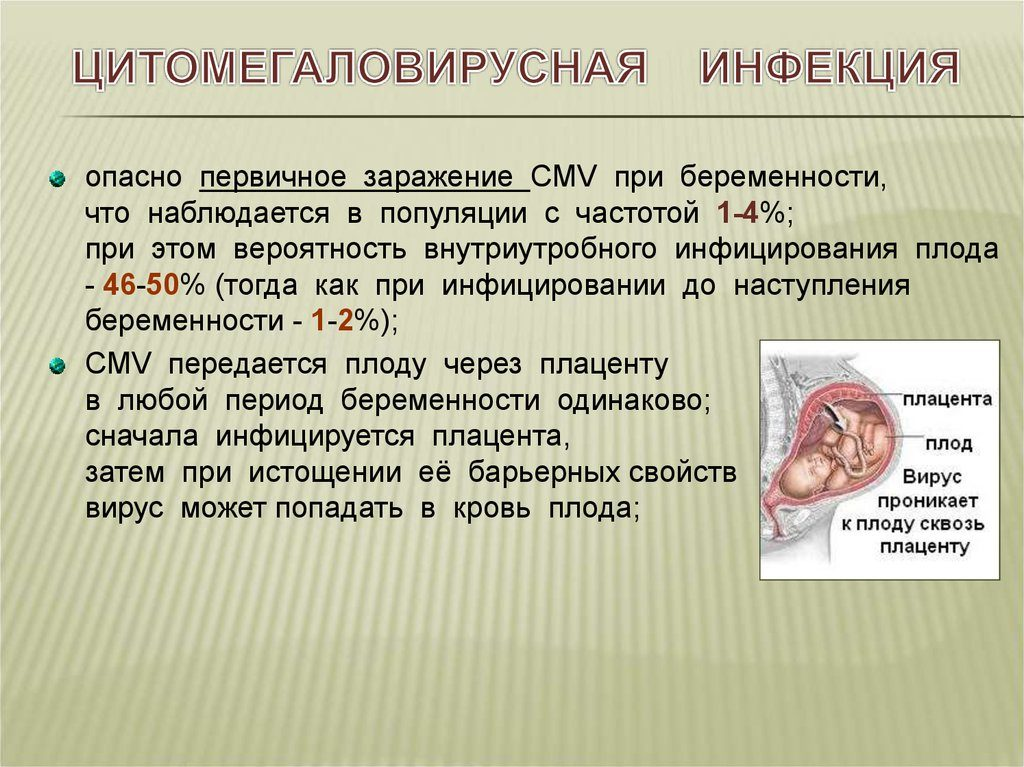 цитомегаловирусная инфекция во время беременности
