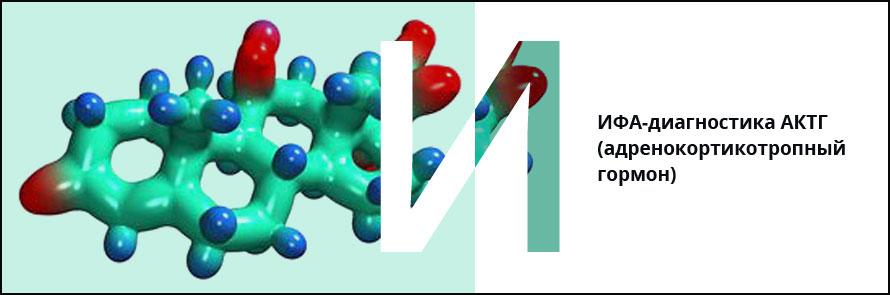 адренокортикотропный гормон и его формула