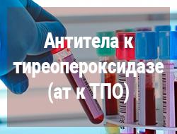 антитела к тиреопероксидазе щитовидной железы
