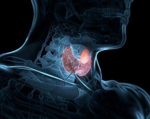 субклинический гипотиреоз и его проявления