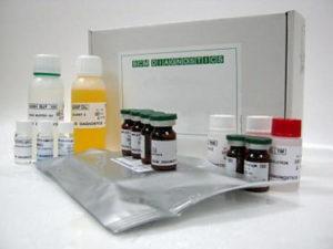 холецистокинин инструкция по применению