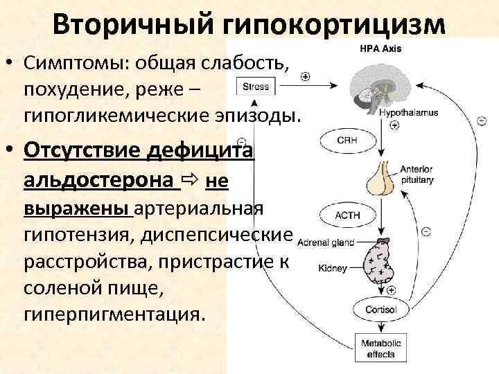 симптомы вторичного гипокортицизма